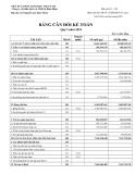 Báo cáo tài chính của Công ty cổ phần Sách và Thiết bị Bình Định năm 2010