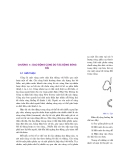 Động lực học ứng dụng về sóng mặt đại dương ( Quyển 1 ) - Chương 5