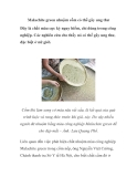 Malachite green nhuộm cốm có thể gây ung thư