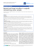 "Báo cáo y học: ""Bacterial and fungal microflora in surgically removed lung cancer samples."""