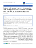 "Báo cáo y học: ""Delayed endovascular treatment of descending aorta stent graft collapse in a patient treated for post- traumatic aortic rupture: a case report"""