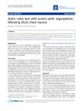 "Báo cáo y học: ""Aortic valve tear with severe aortic regurgitation following blunt chest trauma"""