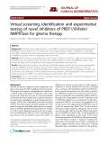 """Báo cáo y học: """"Virtual screening, identification and experimental testing of novel inhibitors of PBEF1/Visfatin/ NMPRTase for glioma therap"""""""