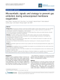 """Báo cáo y học: """"Microembolic signals and strategy to prevent gas embolism during extracorporeal membrane oxygenation"""""""