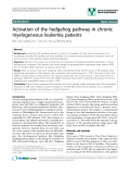 """báo cáo khoa học: """" Activation of the hedgehog pathway in chronic myelogeneous leukemia patients"""""""
