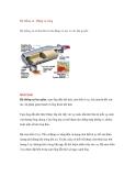 Hệ thống xả - Động cơ xăng