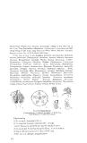 Thực vật dược part 8