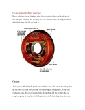 Cấu tạo phanh guốc (Phanh tang trống)