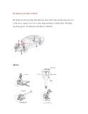 Hệ thống treo khí điện tử EMAS