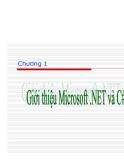 Lập trình hướng đối tượng với .NET & C#.Chuong1 Giới thiệu Microsoft.Net và C#
