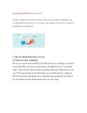 Hệ thống điều khiển khoá cửa từ xa (2)