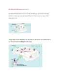 Hệ thống điều khiển khoá cửa từ xa(1)