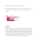 Các thành phần chính trong hệ thống điện lạnh ô tô (Phần 1)