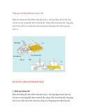 Tổng quan hệ thống điều hòa trong xe ôtô