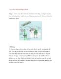 Bài giảng về Các cơ cấu chính của động cơ Diesel