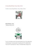Các dạng buồng đốt động cơ xăng và động cơ Diesel