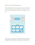 Kiến thức cơ bản về điều khiển điện tử động cơ xăng