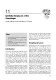 Upper Gastrointestinal Surgery - part 5