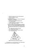 Ứng dụng tin học trong giảng dạy Hóa học part 8