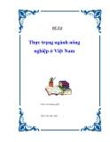 """Đề tài """" Thực trạng ngành nông nghiệp ở Việt Nam """""""