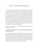 """Báo cáo nghiên cứu khoa học """" Hợp tác Việt - Trung nghiên cứu lý luận về chủ nghĩa xã hội """""""