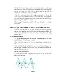 Giáo trinh bơi lội part 4