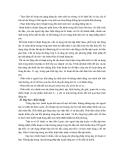 Giáo trình đá cầu part 5