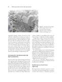 Clinical Procedures in Laser Skin Rejuvenation - part 4