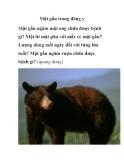 Mật gấu trong đông y