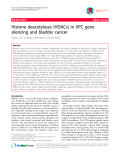 """Báo cáo y học: """"Histone deacetylases (HDACs) in XPC gene silencing and bladder cancer"""""""