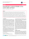 """Báo cáo y học: """"Chemotherapy in advanced bladder cancer: current status and future"""""""