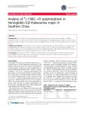 "báo cáo khoa học: ""Analysis of Gg-158(C®T) polymorphism in hemoglobin E/b-thalassemia major in Southern China"""