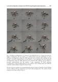 Climbing and Walking Robots part 12