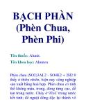 BẠCH PHÀN (Phèn Chua, Phèn Phi)