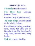 KIM NGÂN HOA