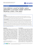 "Báo cáo y học: ""Acute abdomen caused by bladder rupture attributable to neurogenic bladder dysfunction following a stroke: a case report"""