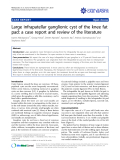 """Báo cáo y học: """" Large infrapatellar ganglionic cyst of the knee fat pad: a case report and review of the literature"""""""