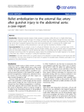 "Báo cáo y học: ""Bullet embolization to the external iliac artery after gunshot injury to the abdominal aorta: a case report"""