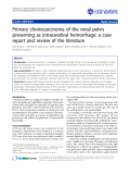 """báo cáo khoa học: """" Primary choriocarcinoma of the renal pelvis presenting as intracerebral hemorrhage: a case report and review of the literature"""""""