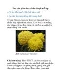 Hoa cúc giảm đau, chữa tăng huyết áp