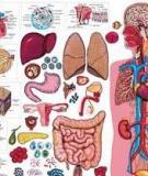 Pathology and Laboratory Medicine - part 1