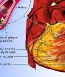 Pathology and Laboratory Medicine - part 9
