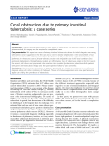 """Báo cáo y học: """" Cecal obstruction due to primary intestinal tuberculosis: a case series"""""""