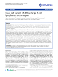 "Báo cáo y học: ""Clear cell variant of diffuse large B-cell lymphoma: a case report."""