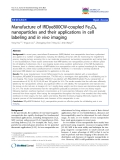 """báo cáo khoa học: """" Manufacture of IRDye800CW-coupled Fe3O4 nanoparticles and their applications in cell labeling and in vivo imaging"""""""