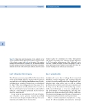 Endoscopic Extraperitoneal Radical Prostatectomy - part 8