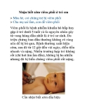 Nhận biết sớm viêm phổi ở trẻ em