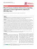 "Báo cáo y học: ""Wound trauma mediated inflammatory signaling attenuates a tissue regenerative response in MRL/MpJ mice"""