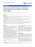 """Báo cáo y học: """"Aorto-venous fistula between an abdominal aortic aneurysm and an aberrant renal vein: a case report"""""""