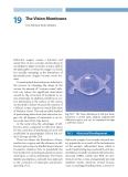 Refractive Lens Surgery - part 9
